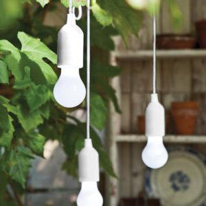 Lumen Light Bulb