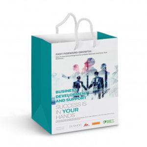 Medium Laminated Paper Carry Bag – Full Colour