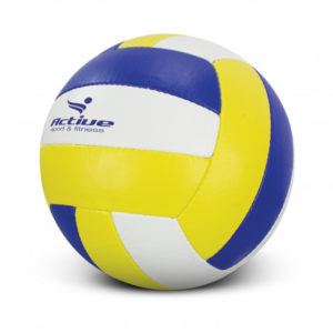 Volleyball Pro